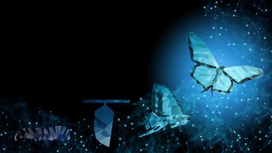 Tom Klein | Themenbereiche | Agile Transformation | Raupe